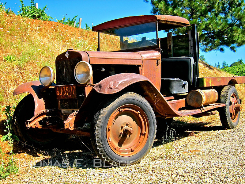 Trucks ~ Old, rusted, discarded, abandoned. Various makes. - tfblack