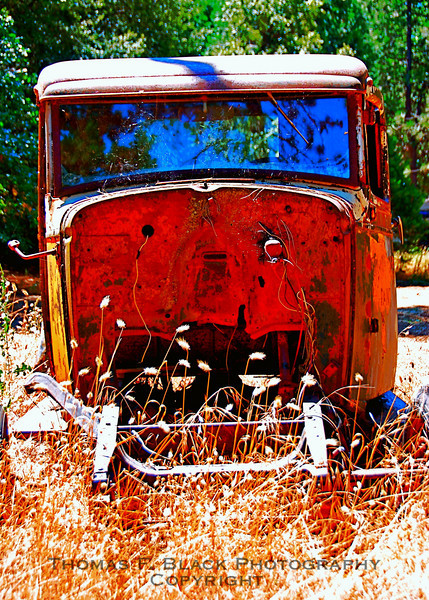 This and three frames following, Ford Model A pickup -- minus front end -- found abandoned in field, Hwy. 49, Sierra County, CA. [UFP 072009]