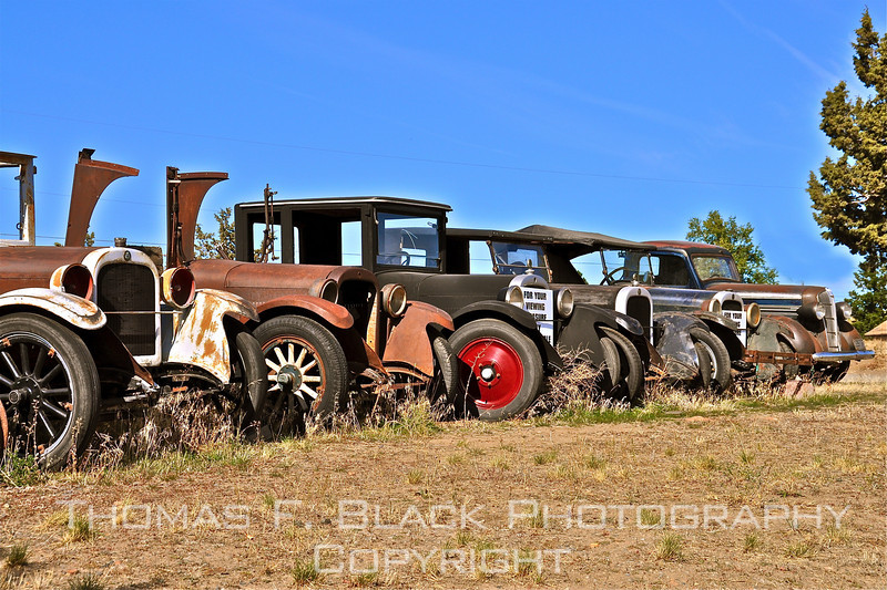 All Dodges. Vehicle at extreme right is 1930s model, others are 1920s. [UFP101810]