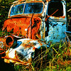 This and three frames following, pickup truck let to rust amid dense vegetation, Whatcom County, WA. [UFP 083009]