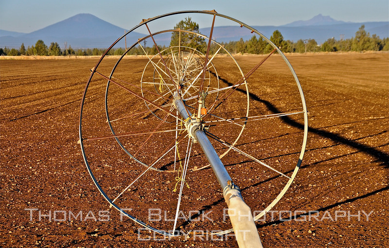 This frame and next, agricultural irrigation wheels, Hwy. 97, north of Bend, OR. [UFP102010]