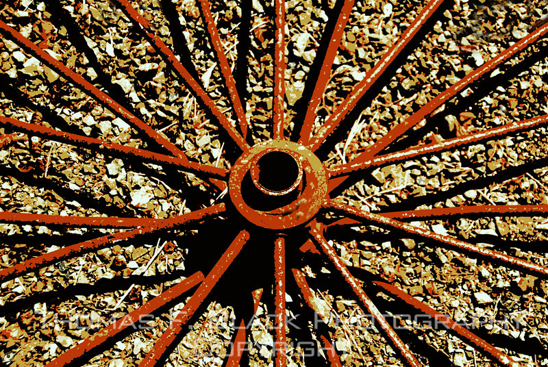 Spokes to old wagon wheel on ground at horse ranch, Solano County, CA. [UFP 081509]