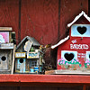 Bird houses on exterior of barn, Sonoma County, CA. [UFP030310] rustic relics, rustic relics pictures, rustic relics photos, rural americana, rural americana pictures, rural americana photos