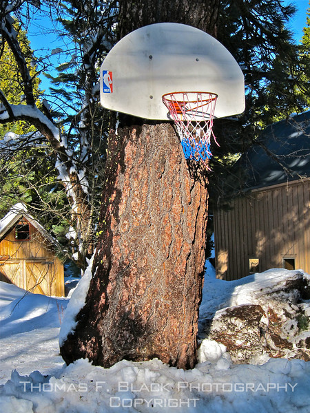 January snowstorm puts damper on curbside basketball, Johnsville, CA (Plumas County). [UFP010911]