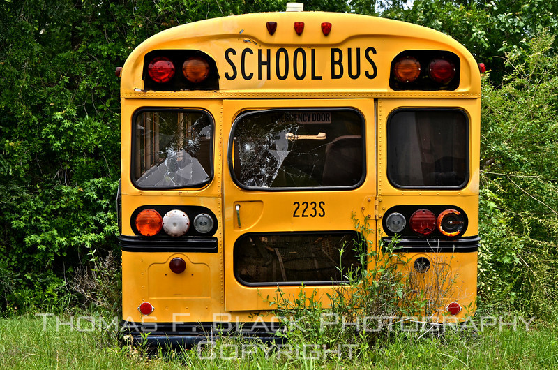 This and five frames following, retired school bus, Hwy. 1, north Greenville, MS. [UFP050511]
