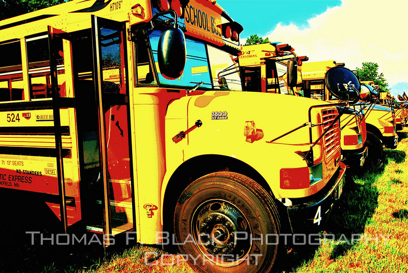 "This and four frames following, school buses ""on vacation"" in parking lot alongside highway, Ware, MA. [UFP 072609] old buses, old bus pictures, old bus photos, old school buses, old school bus pictures, old school bus photos, rusted relics, rusted relics pictures, rusted relics photos"