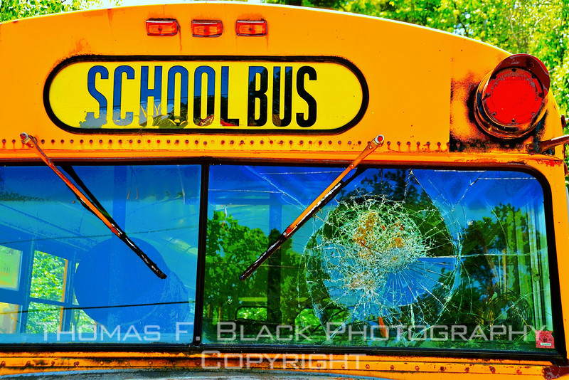 [UFP060110] old buses, old bus pictures, old bus photos, old school buses, old school bus pictures, old school bus photos, rusted relics, rusted relics pictures, rusted relics photos