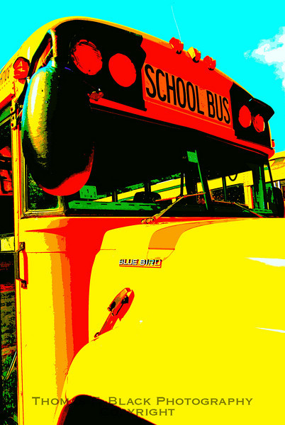 old buses, old bus pictures, old bus photos, old school buses, old school bus pictures, old school bus photos, rusted relics, rusted relics pictures, rusted relics photos