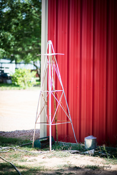 Rustic Barn pics July-8890