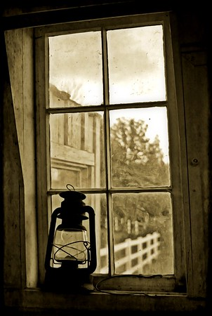 :Silhouette of a Lamp Looking Out