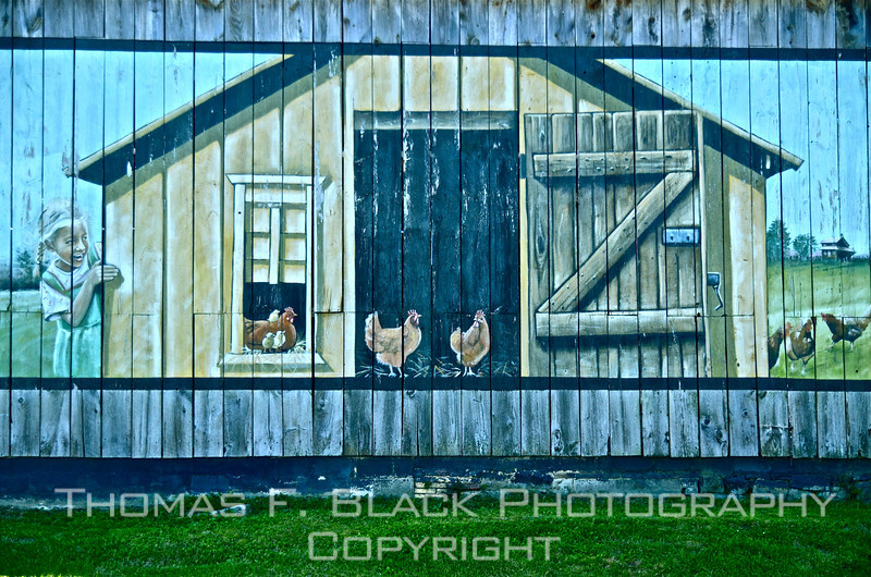 This and frame following, painted sides of barn, Lancaster County, PA. [UFP051812]