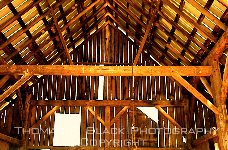 Interior of barn, Plumas County, CA. [UFP 011809]