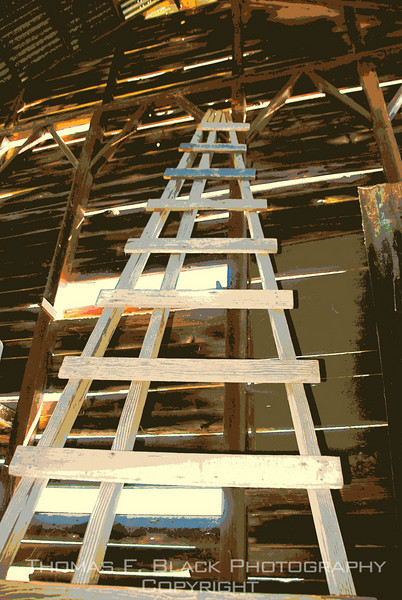 Old wooden fruit-tree ladder found in barn, Amador County, CA. Special graphic effect applied. [UFP 032709]