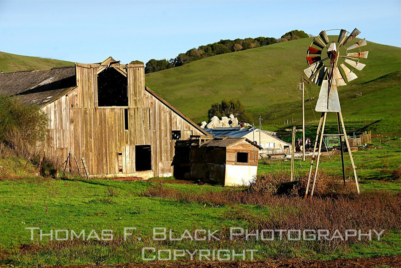 Barn with functional windmill, Marin County, CA. [UFP 010409]