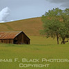 This and frame following, barn, eastern side of Mount Diablo, Marsh Creek Road, south of Clayton, CA. [UFP 050309]