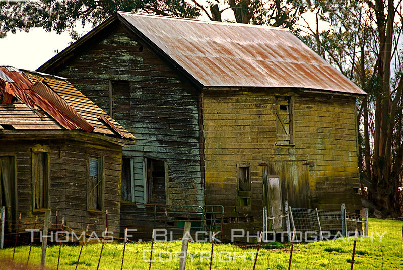 Ramshackle, vacant farm house, Marin County, CA. [UFP 022009]