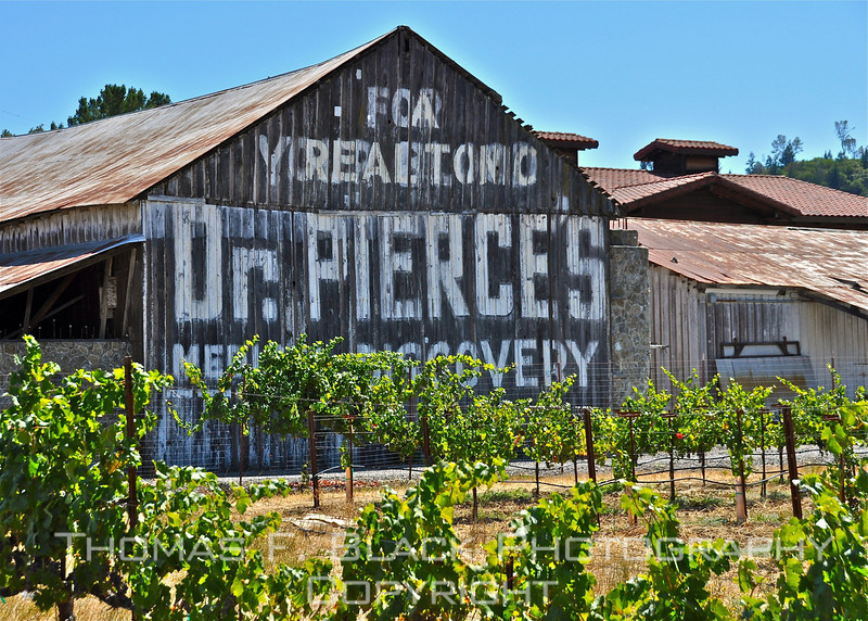 Barn alongside Hwy. 101, Geyersville, CA (Napa County). (Gold star to first person who correctly deciphers top two lines.) [UFP082219]