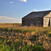 Barn off Interstate 40, just west of Amarillo, TX. Setting sun imparts glow to various field grasses. [UFP062910]
