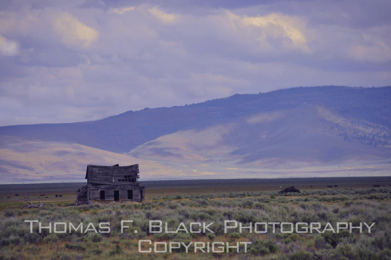 Ramshackle abandoned dwelling bathed in glow of setting sun against hills, Hwy. A23, Plumas County, CA. [UFP062510]