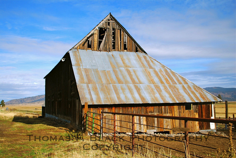 This and two frames following, barn on Hwy. A23, Sierra County, CA. (Different exposures, seasons, angles and/or graphic-effect treatments.)  [UFP 111008]