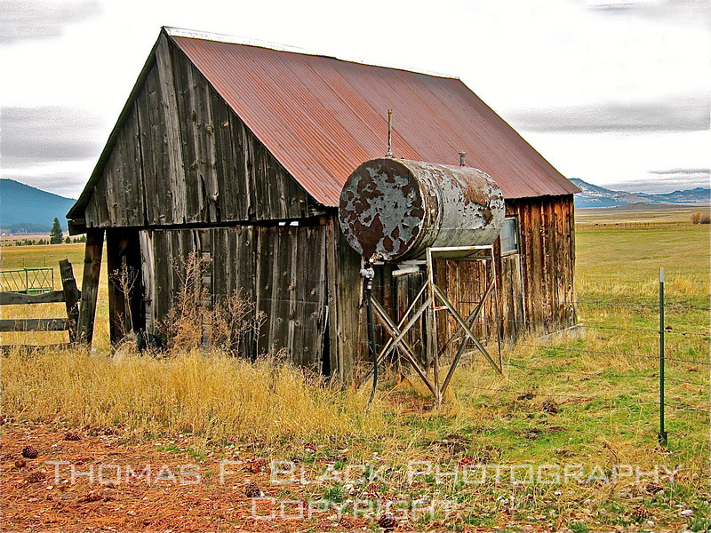 Sierraville, CA, cattle ranch off Hwy. 89. [UFP111410]
