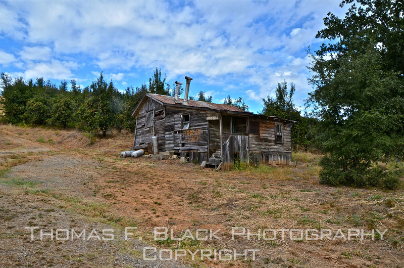 This and two frames following, abandoned house on 35 acres of ranch land for sale, outside Placerville, El Dorado County, CA [UFP092511]