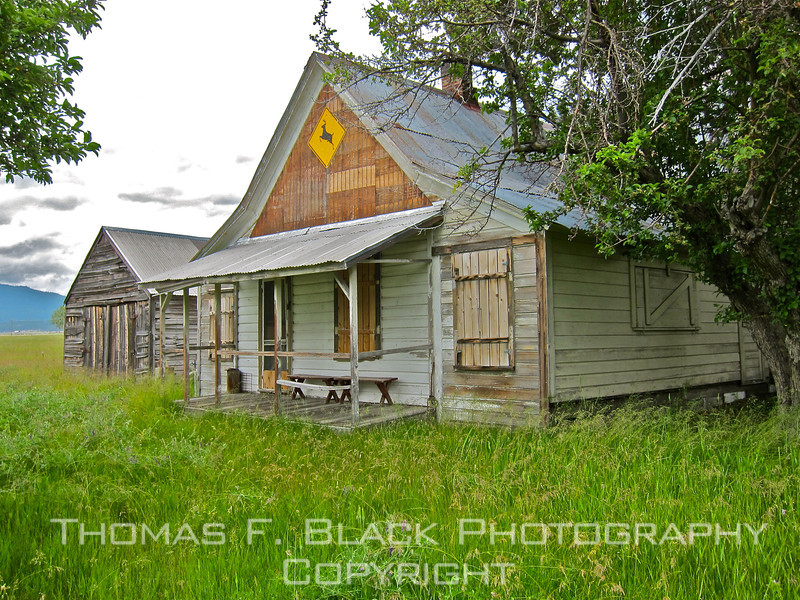 """This and frame following, abandoned residence off Hwy. 49, Sierraville, CA. Note """"deer"""" road sign. [UFP062811]"""