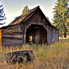 Old shed, Hwy. 70, Plumas County, CA. [UFP080710]