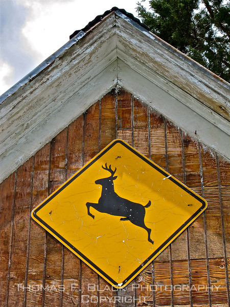 Sign mounted on garage, Sierra County, CA. [UFP062811]