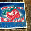 First organic berry farm in State of California, Hwy. 1, San Mateo County. [UFP 030410]