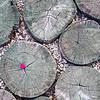 Clair Hixson, Romania, Carpathian Mountains, Balaban, begonia petal on wooden deck