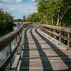 A sinuous walkway in Robinson Preserve weaves through the mangroves