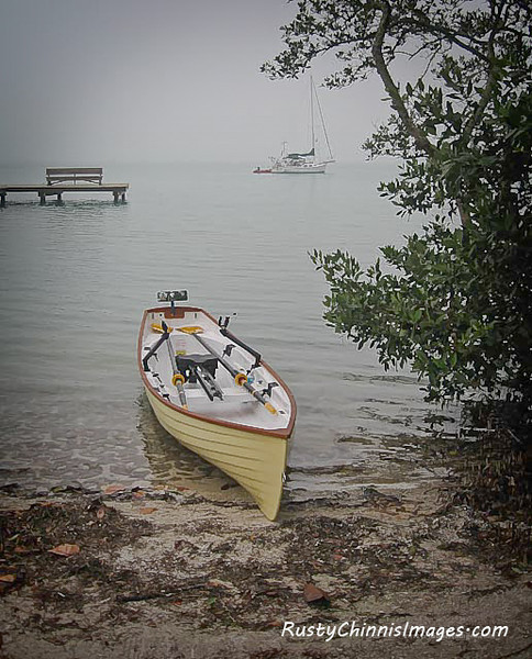 Rowing is a great way to appreciate the many natural and sustainable wonders of the gulf coast.