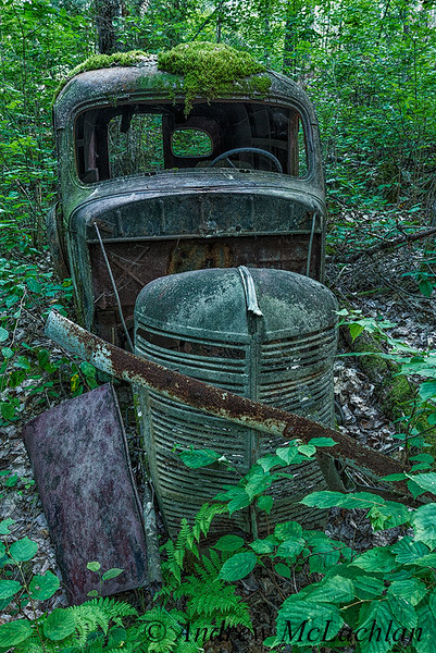 Rusty Old Wreck, Algonquin Provincial Park, Ontario