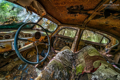 Interior of old dilapidated car. Ontario, Canada