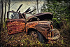 Rusty Old Wreck Abandoned in Woodland Setting, Ontario, Canada
