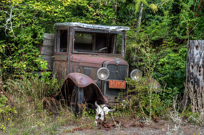 Rusty Chevrolet - Vancouver Island, British Columbia, Canada