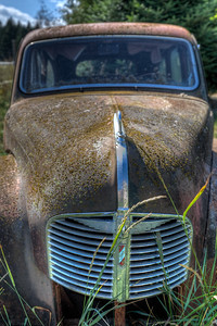 Rusty Car in Field - Cowichan Valley, Vancouver Island, British Columbia, Canada