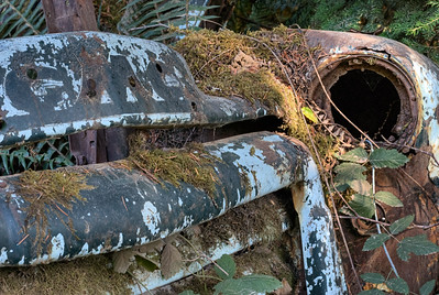 "Abandoned GMC Truck - Cowichan Valley, BC, Canada Visit our blog ""Haunting Eyes"" for the story behind the photos."