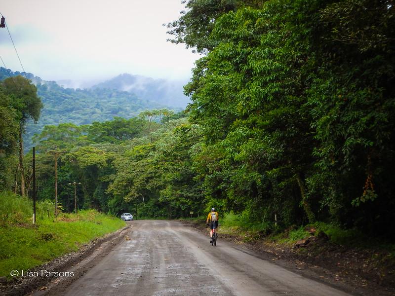 My Favorite a muddy road!
