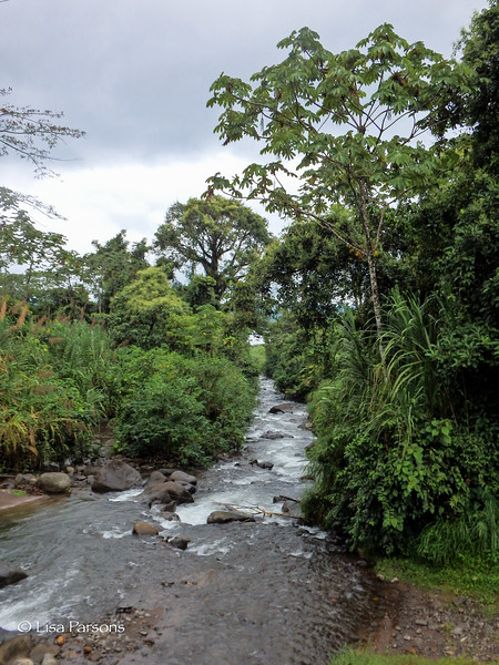 River into Lake Arenal