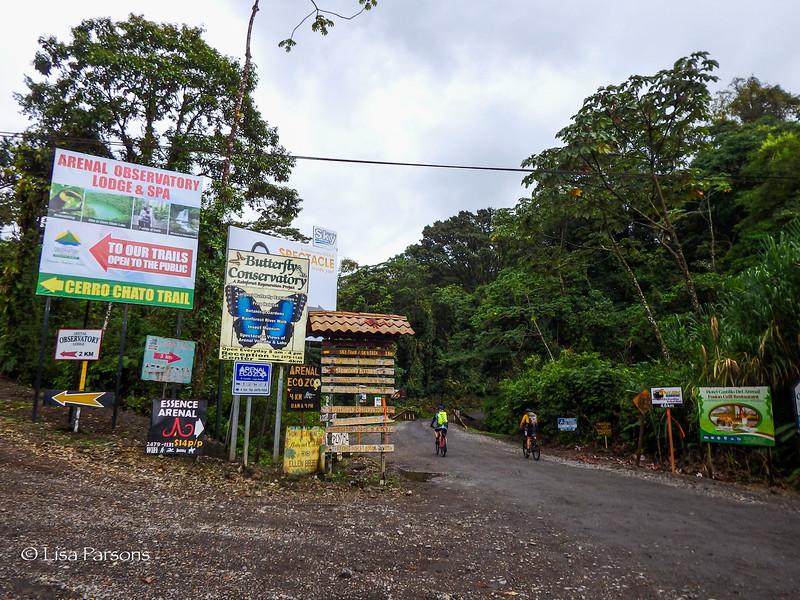 Land of the Coatimundi and Butterflies