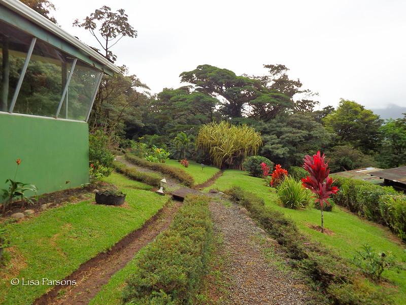 Heliconias Lodge