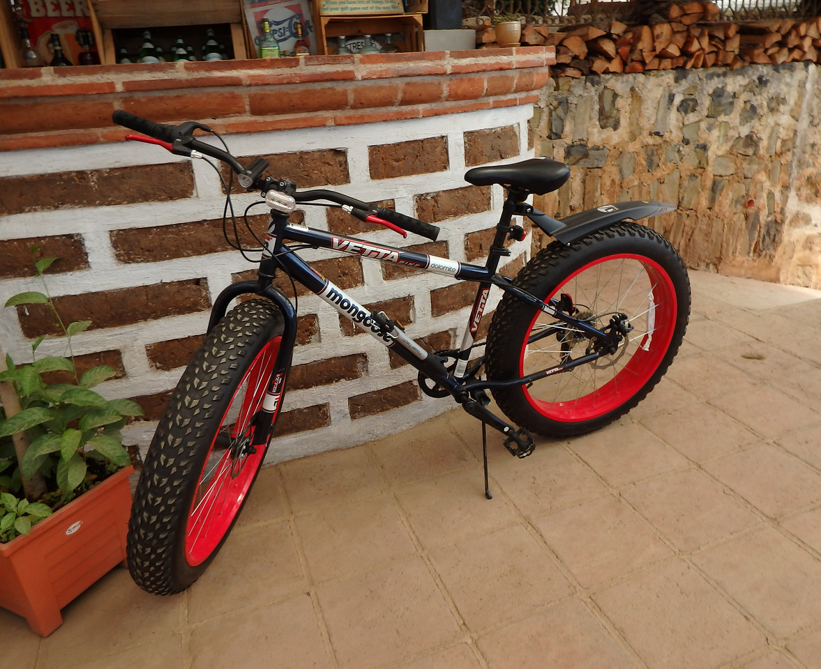 Fat Tire Mongoose