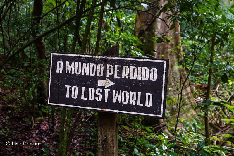 To the Lost World