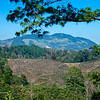 A Patchwork of Coffee Fields and Clearcuts
