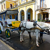 This Carriage Sponsored by Movistar