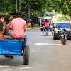Father and Son Going to Market