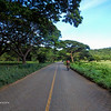 Riding Through Open Fields and Tree Lined Roads
