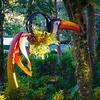 Toucan Planter
